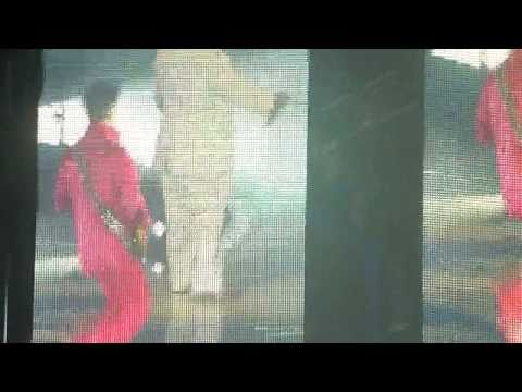 http://s3.vidimg02.popscreen.com/original/46/X1o4Y1g5Y2dyUlUx_o_cee-lo-green-and-prince-crazy-duet-live-in-nyc-272011.jpg
