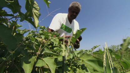 Black Farmers Settlement